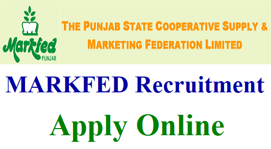 Markfed Punjab Recruitment 2019 -106 Sr. Assistant, Stenos, Manager, Engineer & Other Posts