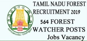 TN Forest Watcher Recruitment 2019 - 564 Forest Watcher Vacancies